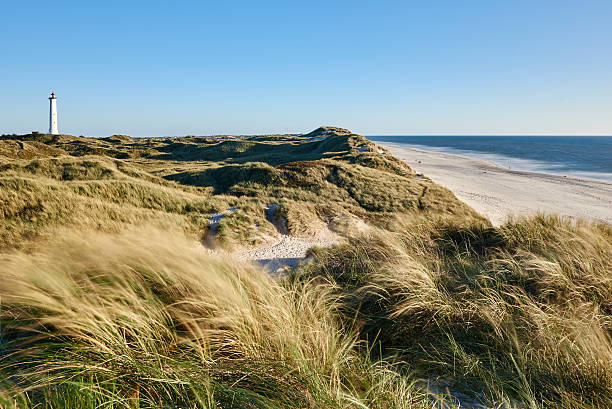 north sea coast - denmark stock photos and pictures