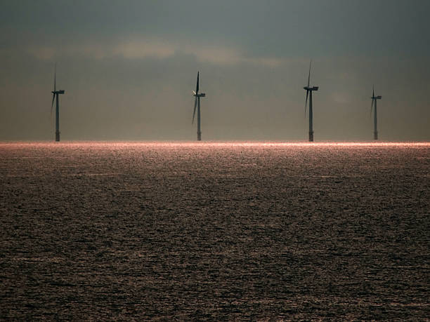 North Sea Wind Farm – Foto