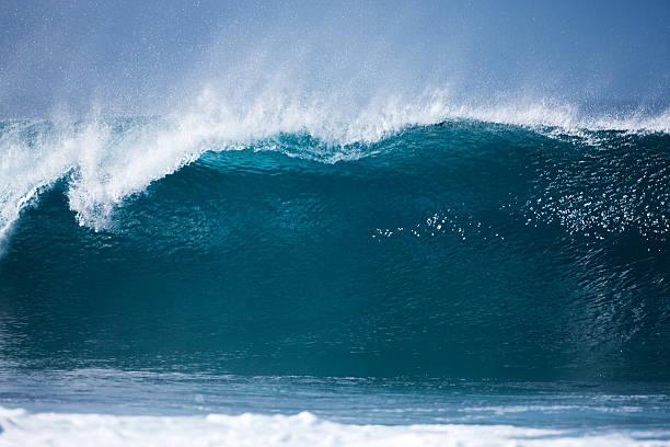 north shore banzai pipeline wave, oahu, à hawaï. - dents des animaux photos et images de collection