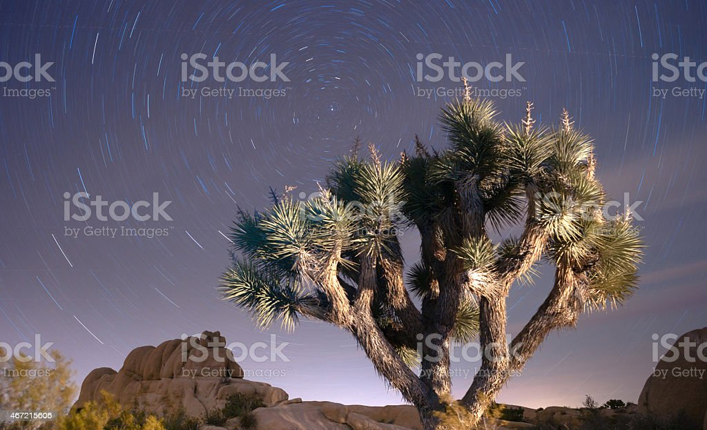 North Star Trails Long Exposure Astronomy Joshua Tree Night Sky stock photo
