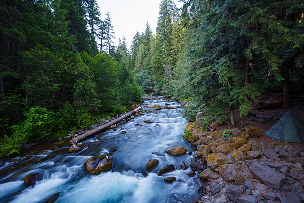 North Umpqua River Oregon stock photo