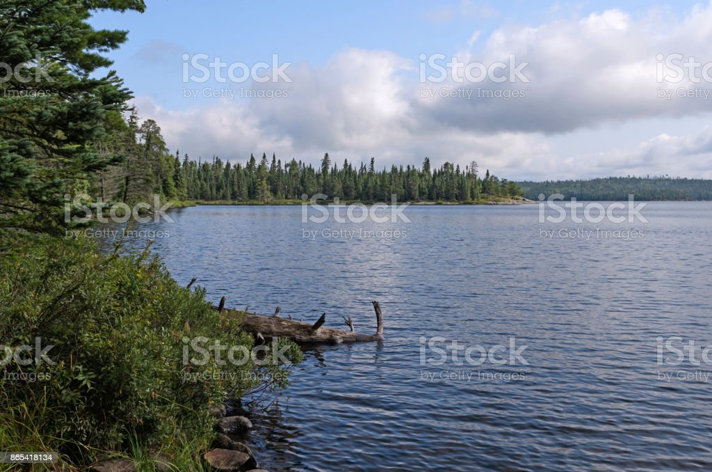 North Woods Lake on a Quiet Summer Day stock photo