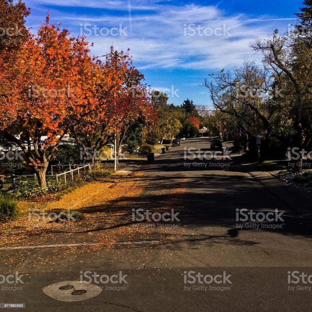 Northern California autumn stock photo