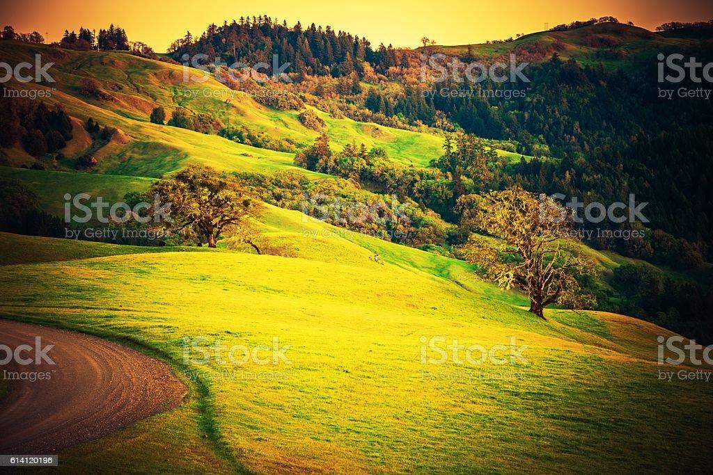 Northern California Countryside stock photo