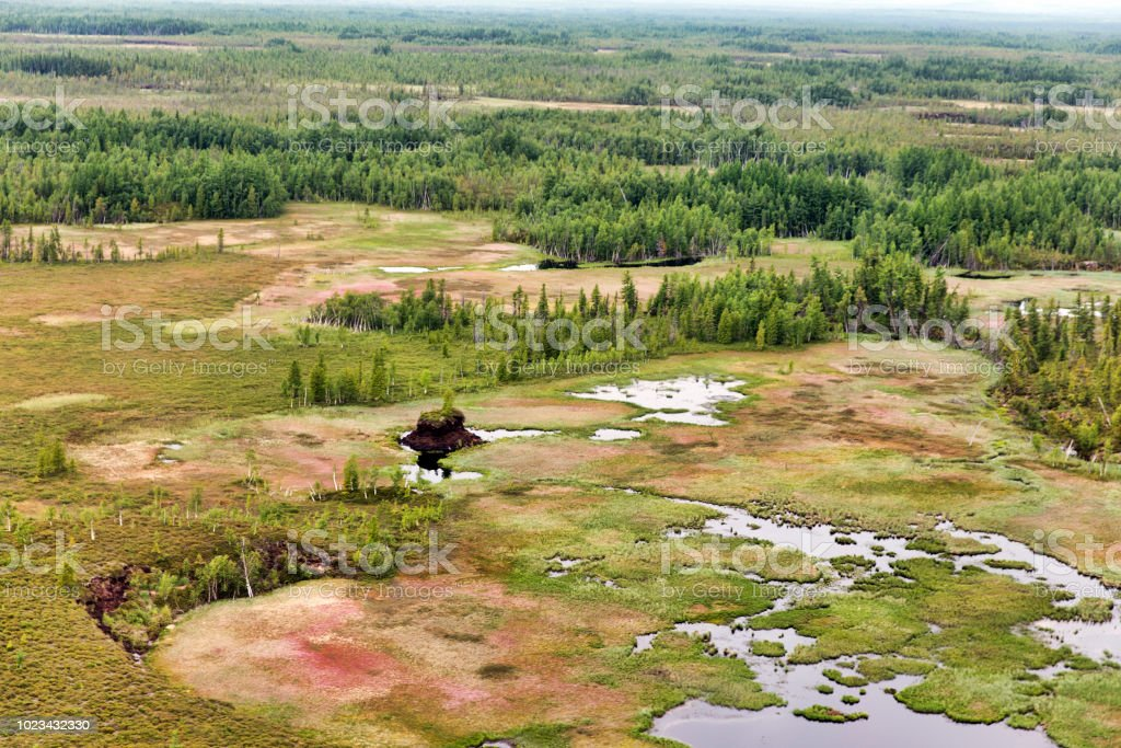 Northern landscape. Endless forests. Impenetrable swamps in the north Northern landscape. Endless forests. Impenetrable swamps in the north Aerial View Stock Photo