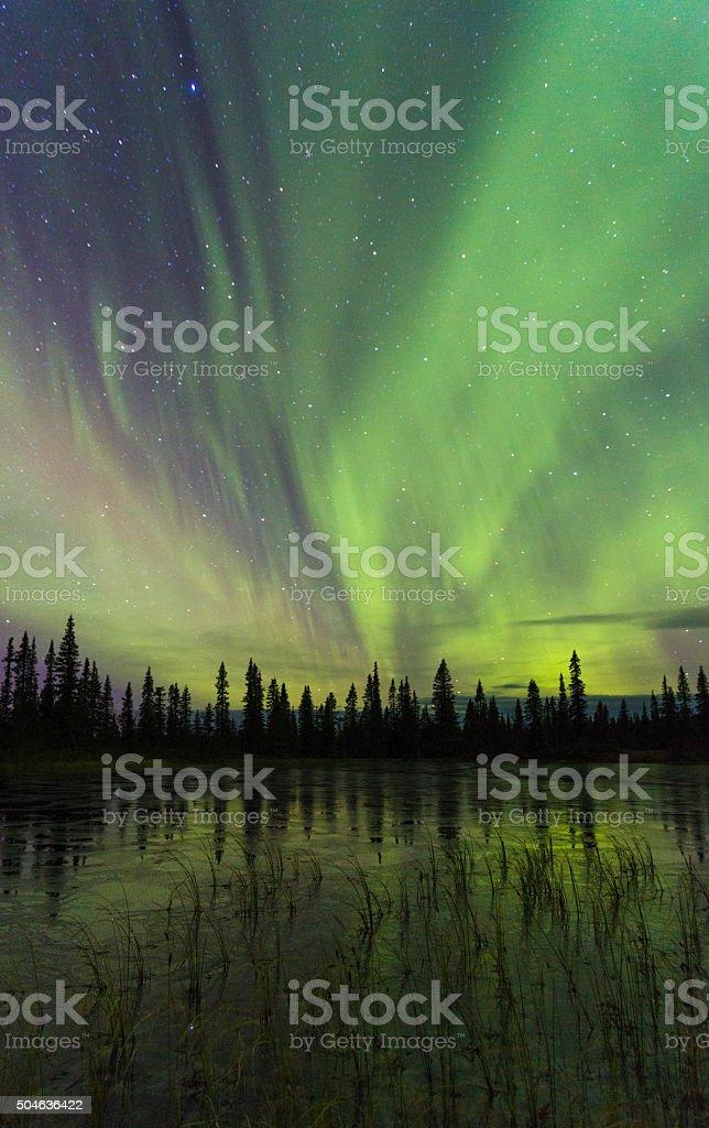 Northern light, aurora borealis, reflecting in ice stock photo