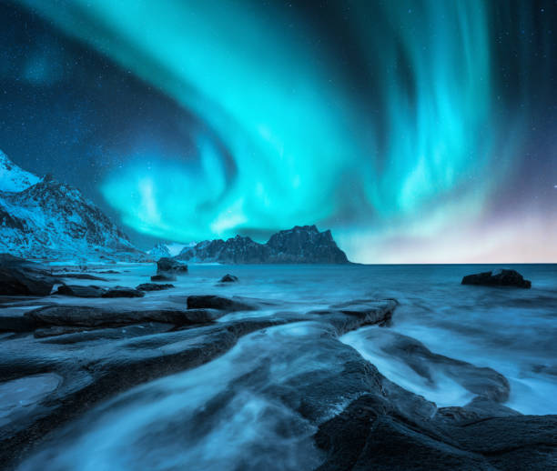 Northern lights above snowy mountains and sandy beach with stones. Aurora borealis in Lofoten islands, Norway. Starry sky with polar lights. Night winter landscape with aurora, sea with blurred water stock photo
