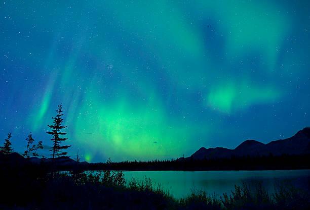 northern lights, aurora borealis, alaska - denali national park bildbanksfoton och bilder
