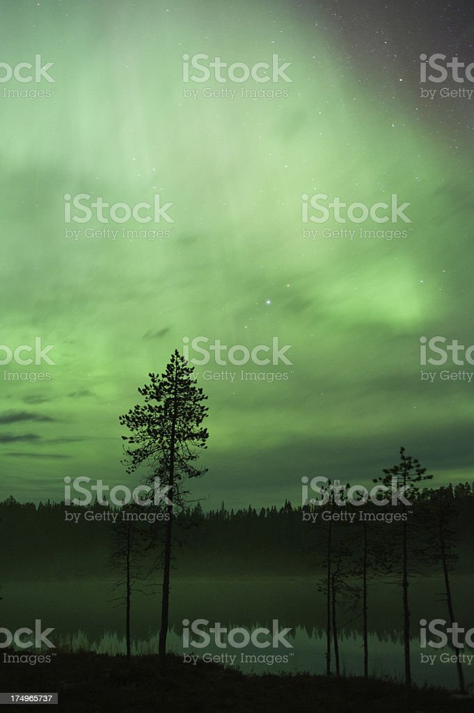 Northern Lights, Aurora Borealis royalty-free stock photo