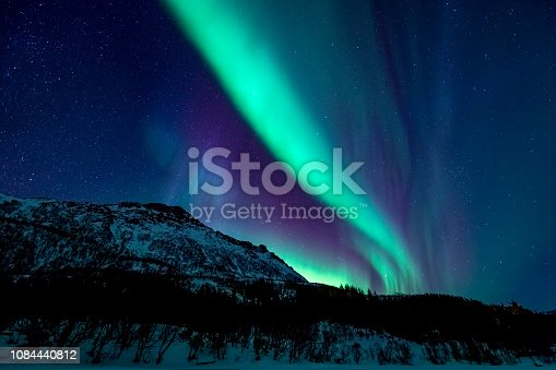 Northern Lights or Aurora borealis in Lofoten islands, Norway. Polar lights in a starry sky over a snowy winter landscape during a cold winter night.