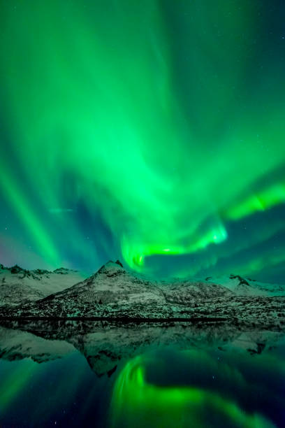 Northern Lights or Aurora borealis over a Fjord in the Lofoten islands, Norway with snowy mountains in the background stock photo
