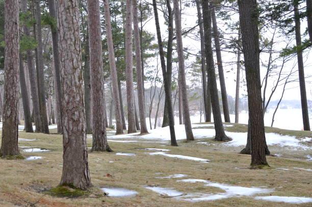 Northern Michigan Winter into Spring stock photo