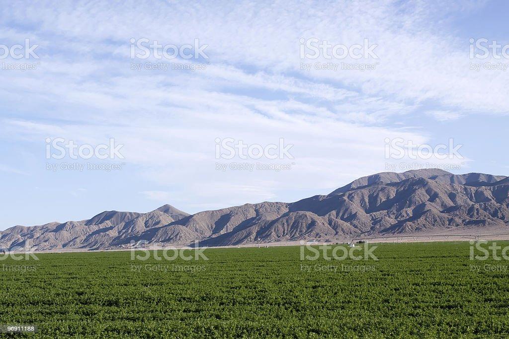 Northern Nevada farmland royalty-free stock photo