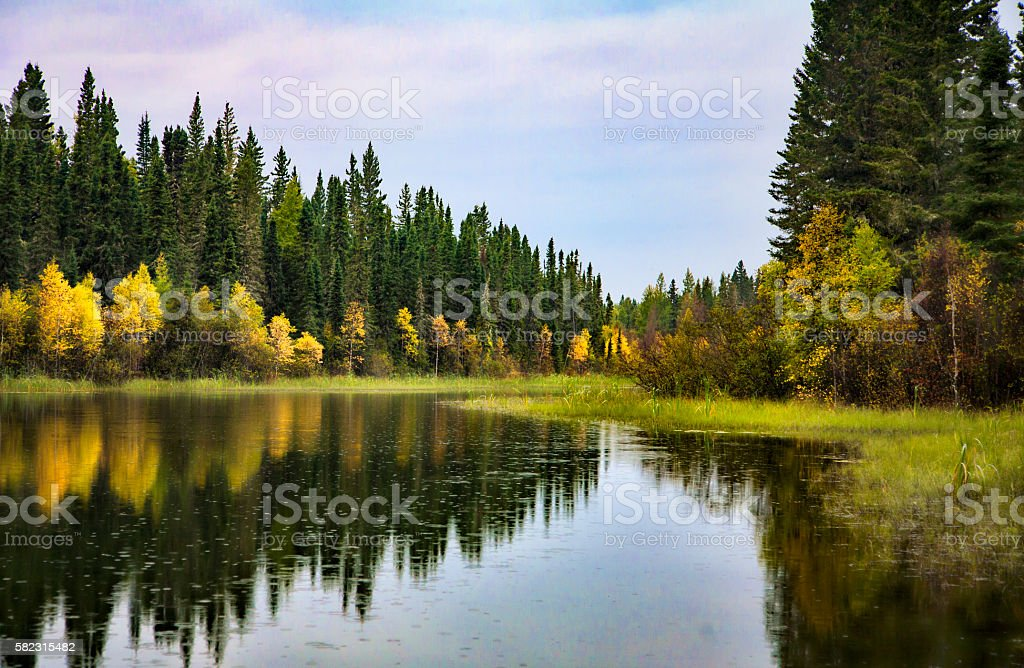 Northern River and Boreal Forest in Prince Albert National Park stock photo