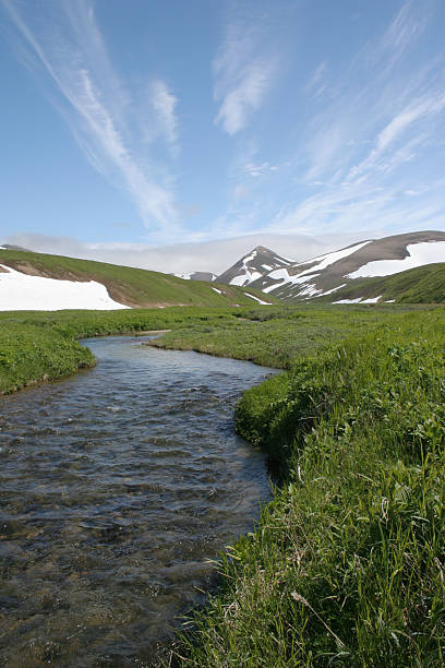 northern summer stock photo