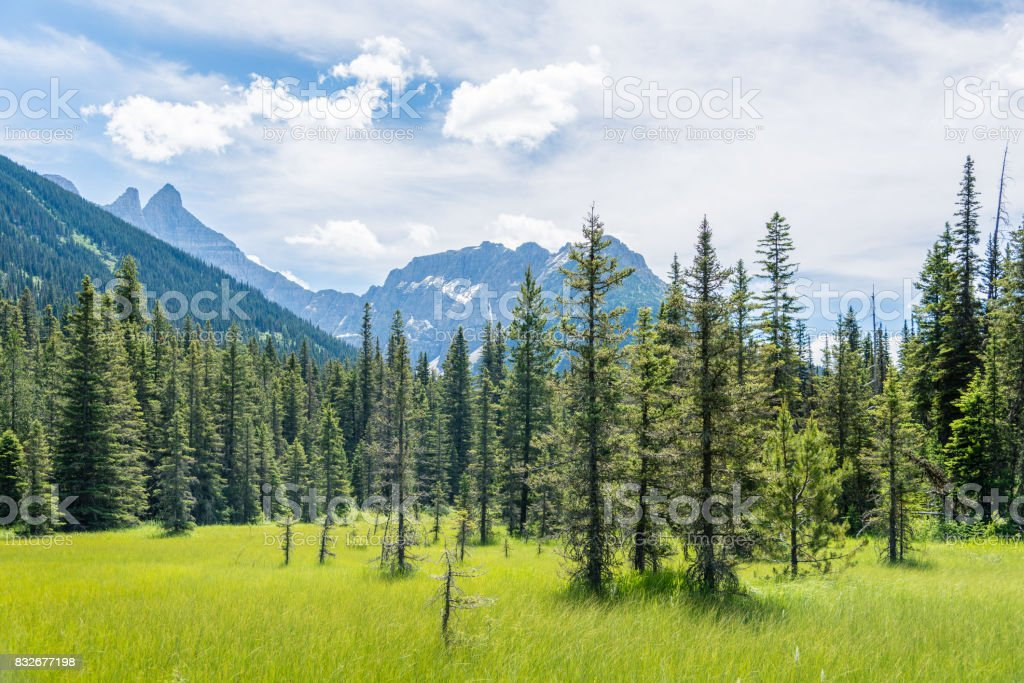 Northern vistas in the summer stock photo