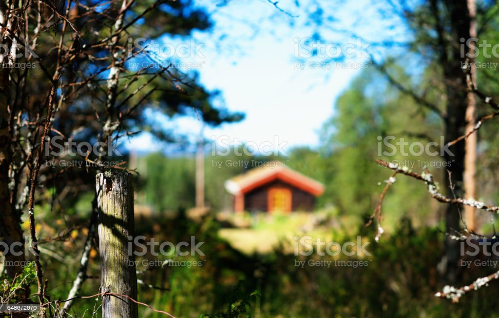 Norway distant farm house in woods background stock photo