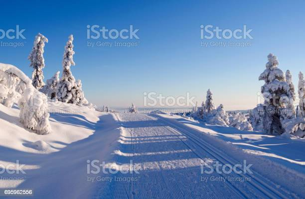 Photo of Norway: Perfect conditions for cross-country skiing