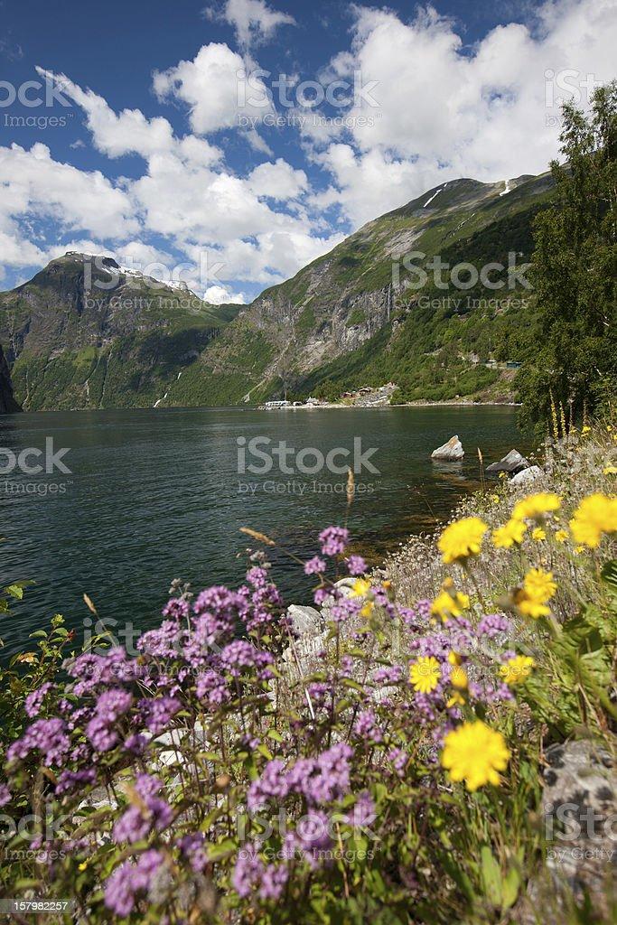 Norway royalty-free stock photo