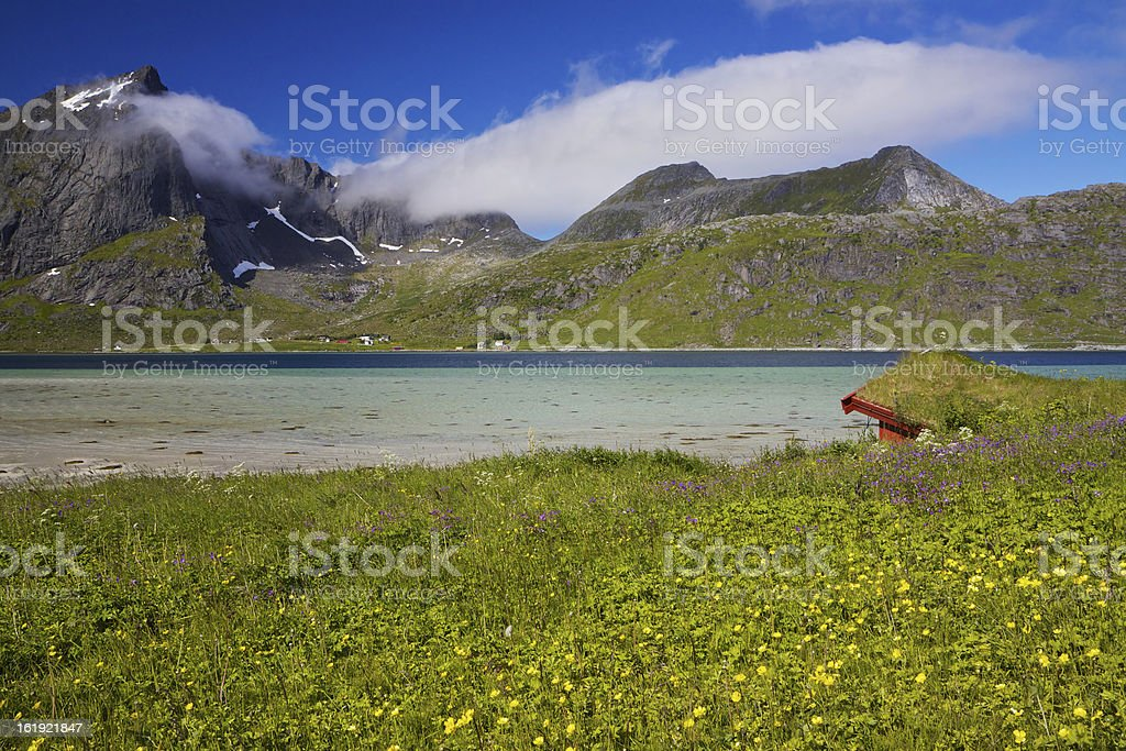 Norway summer royalty-free stock photo