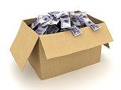 Norwegian currency money box finance