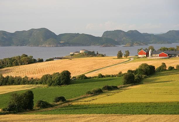 Norwegian farmland stock photo