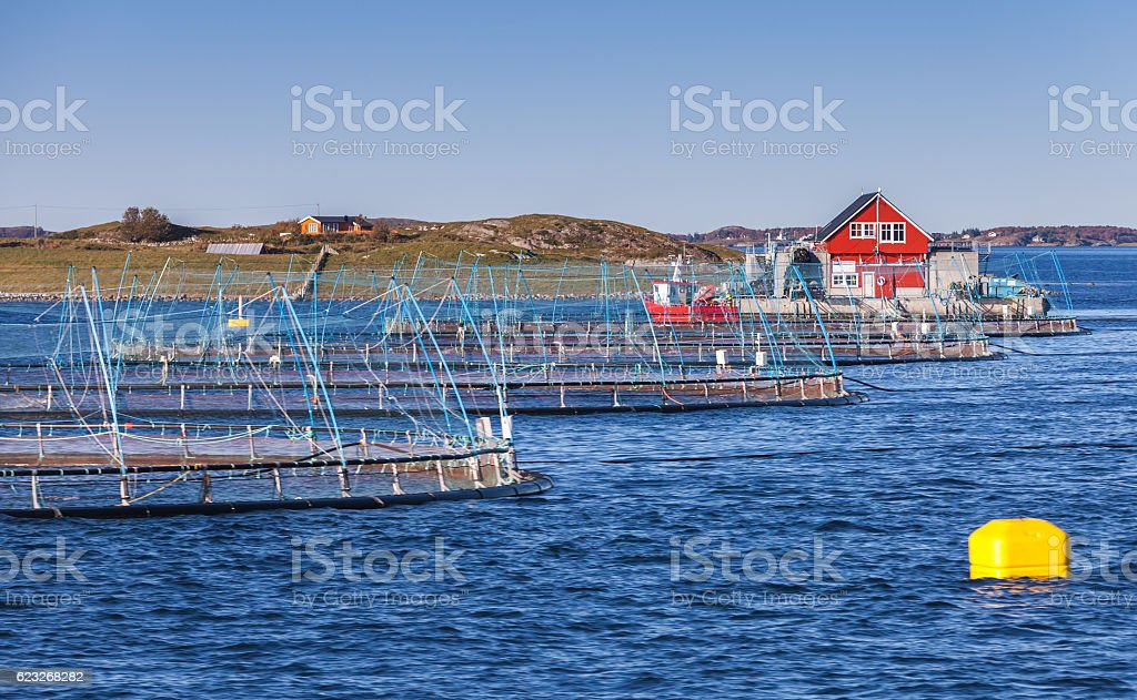 Norwegian fish farm stock photo