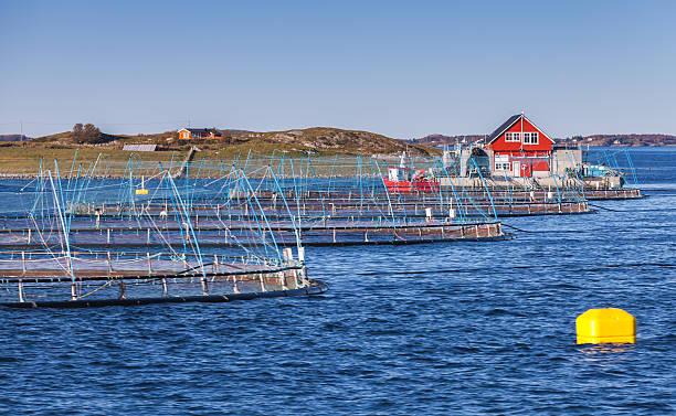 Norwegian fish farm - foto de stock