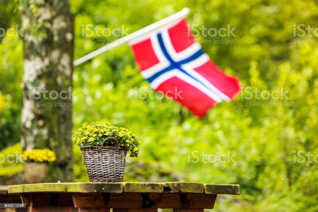 norwegian flag and green picnic site - fotografia de stock