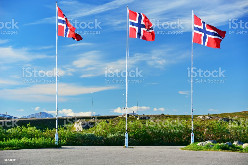 Norwegian flags - fotografia de stock