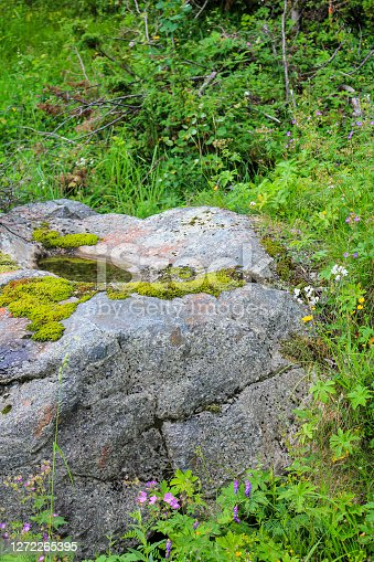 Beautiful Norwegian landscape. Big rocks, mountains and forest. Norway Nature in Hemsedal.