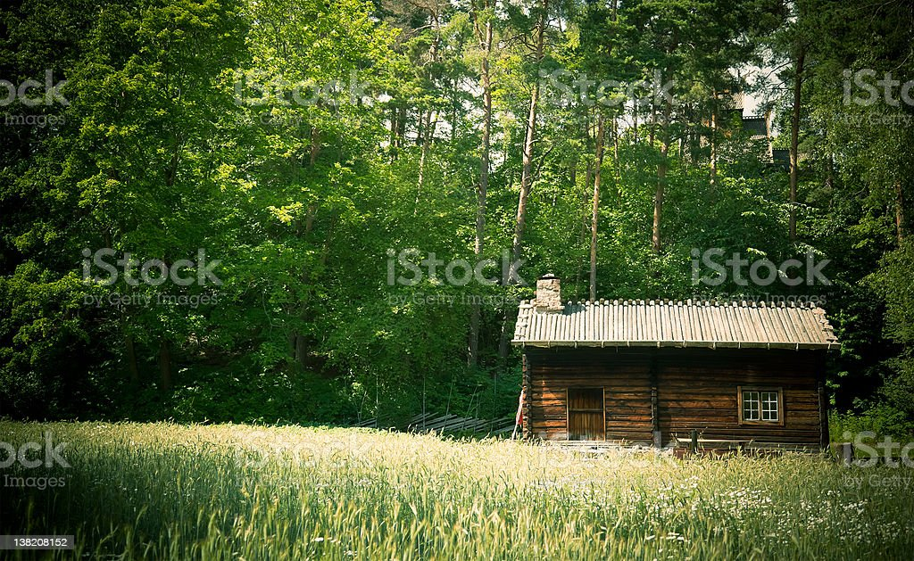 Norwegian Wooden Log Cabin House in the Forest stock photo