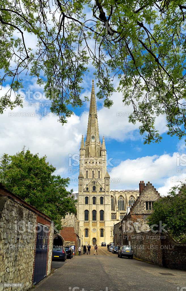 Norwich Cathedral view from the Close royalty-free stock photo
