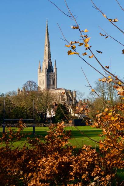 Norwich Catherdral with Autumn trees Looking towards Norwich Cathedral with the autumn leaves on trees and rugby goal. skeable stock pictures, royalty-free photos & images