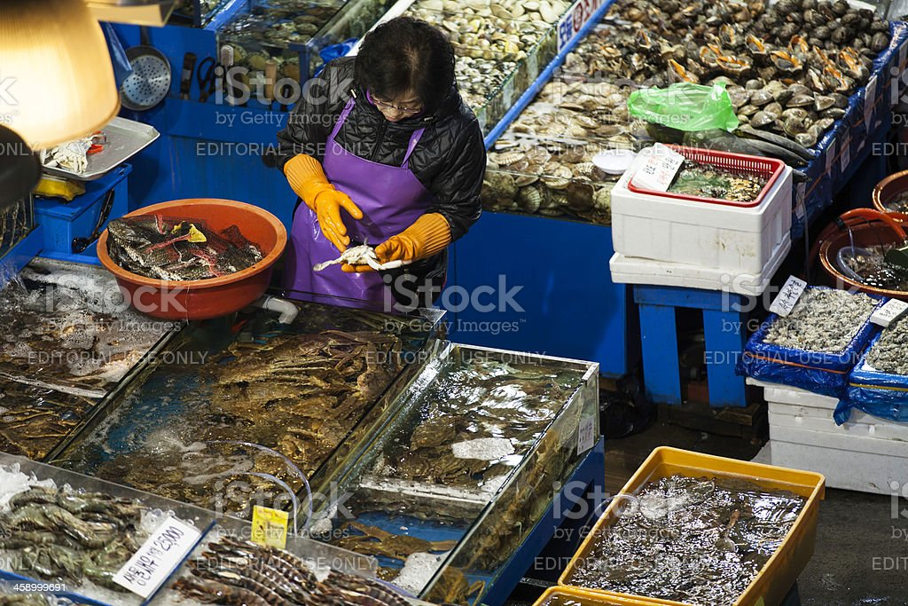 Noryangjin Fisheries Wholesale Market royalty-free stock photo
