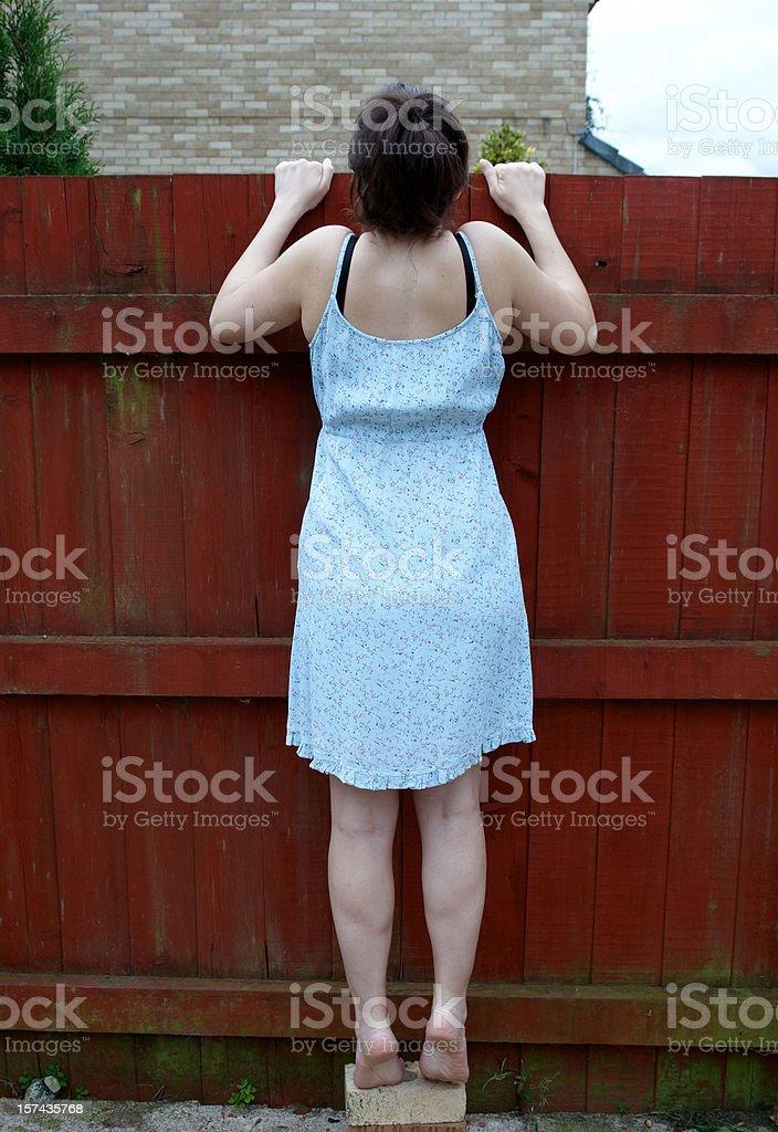 Neugierig Nachbarn Lizenzfreies stock-foto
