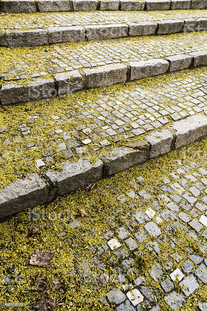 Nostalgic old brick steps with wither plants and leaves royalty-free stock photo