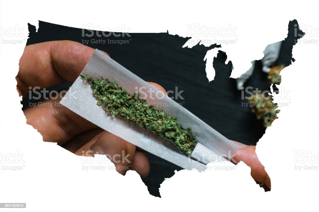 Not fully rolled jamb joint in the hands of a man marijuana weed, ?oncepts of smoking marijuana, dark background top view, close up stock photo