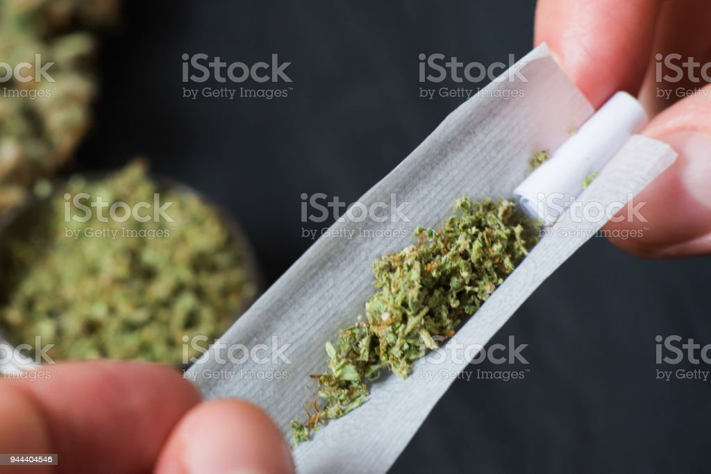 Not fully twisted rolled jamb joint in the hands of a man marijuana The concept of marijuana legalization and the use of cannabis for medical purposes stock photo