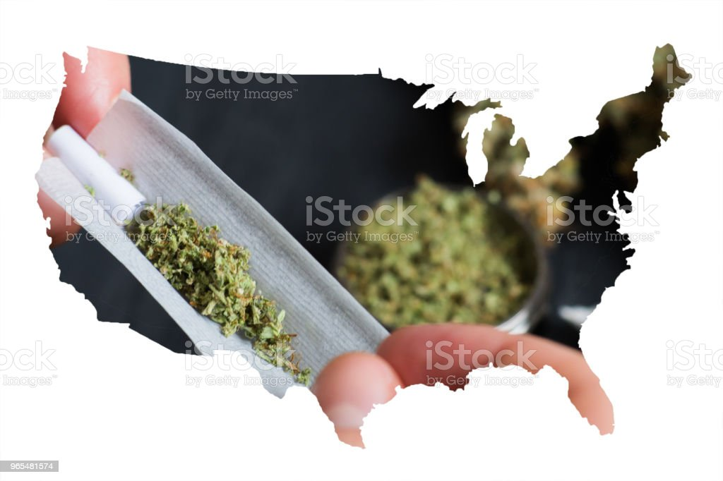 Not fully twisted rolled jamb joint in the hands of a man marijuana weed, ?oncepts of smoking marijuana, dark background stock photo