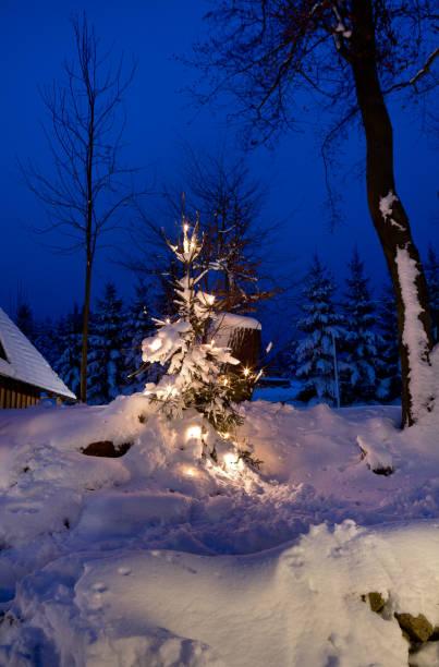 nicht können weihnachtsbaum - wettervorhersage deutschland stock-fotos und bilder