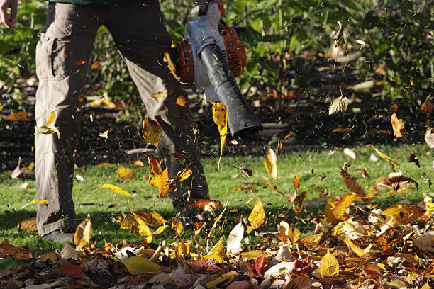 Artificial wind leaf blower blows autumn leaves stock photo