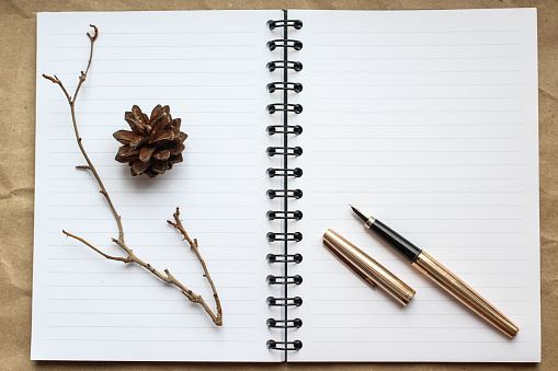 notebook, gold pen and concert on the desk, dry cones and branches decorated table