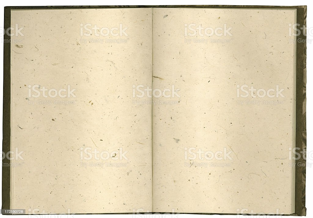 Notebook; HIGH RES 10.5mp royalty-free stock photo