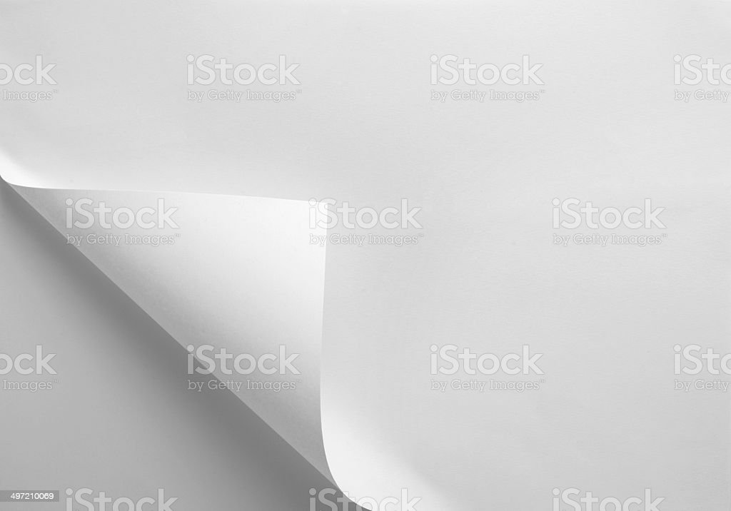 notebook office blank  paper with curl stock photo