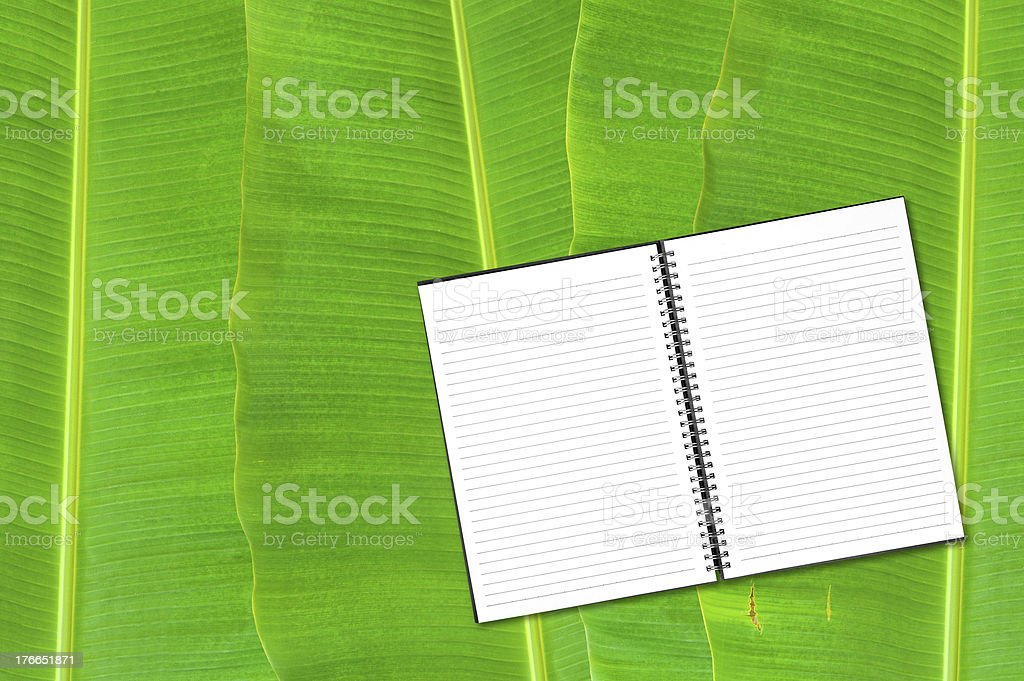notebook on banana leaf background royalty-free stock photo