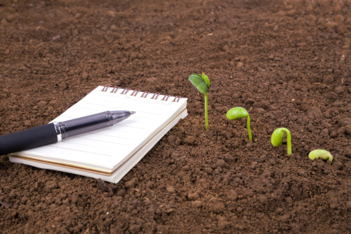 istock A notebook on the ground with a pen beside a growing seed  180748774
