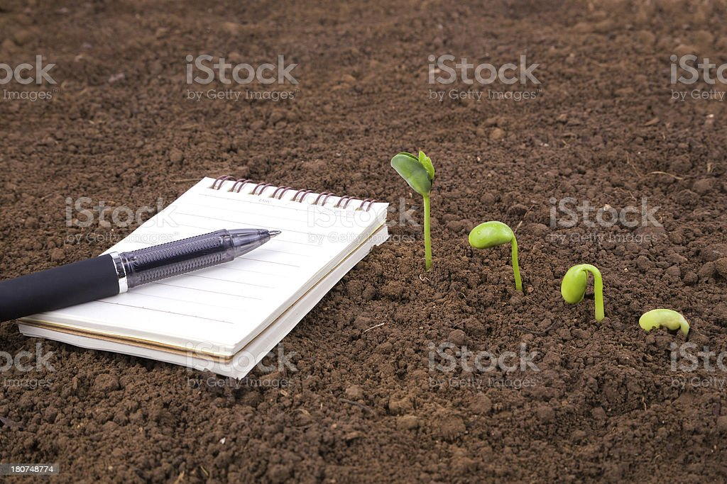 A notebook on the ground with a pen beside a growing seed  stock photo