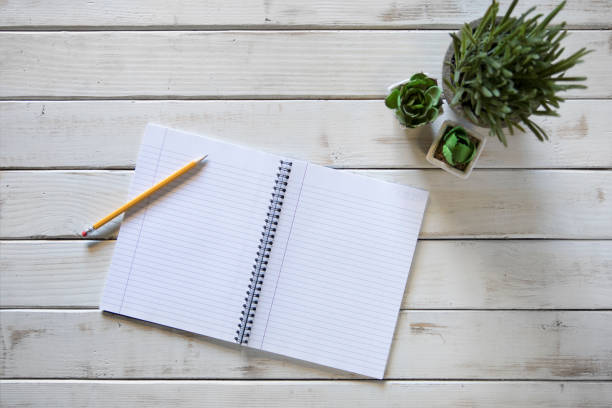 Notebook, pencil, succulent plant and table. workplace. Top view stock photo