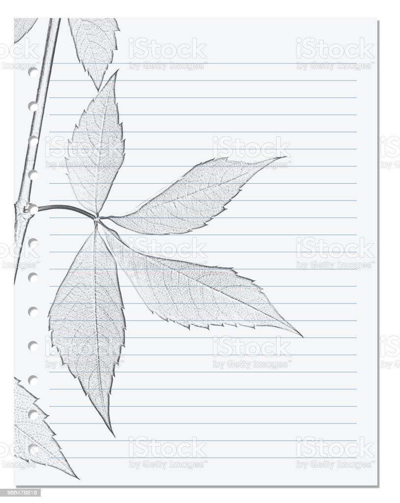 Hoja De Cuaderno En Regla Con El Lápiz Blanco Y Negro Dibujo